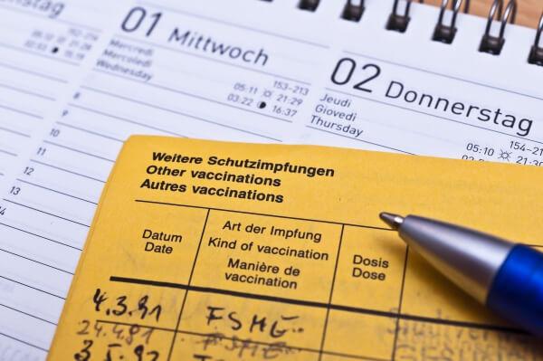 FSME Impfbuch